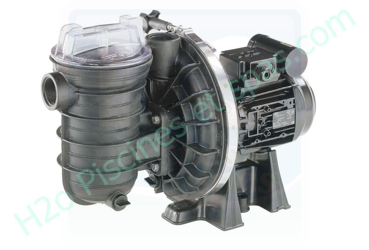 pompe de filtration sta rite 5p2rd1 - 0 75 cv  h