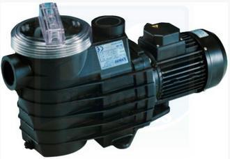 H2o piscines spas piscine pompes de filtration for Pompe piscine kripsol