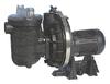 Matériel piscines - Pompes de filtration - STA RITE